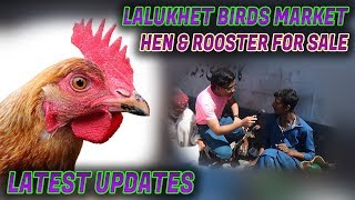 Lalukhet Birds Market 11- 3- 2018  Hen & Rooster for sale Jamshed Asmi Informative Channel