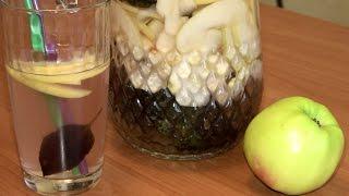 Полезный напиток из яблок с базиликом / Вкусные домашние напитки