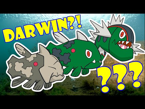 Pokemon Theory: Basculin Evolved from Relicanth?!