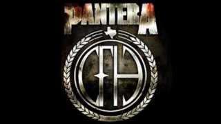 Pantera Vulgar Display of Power Full Album