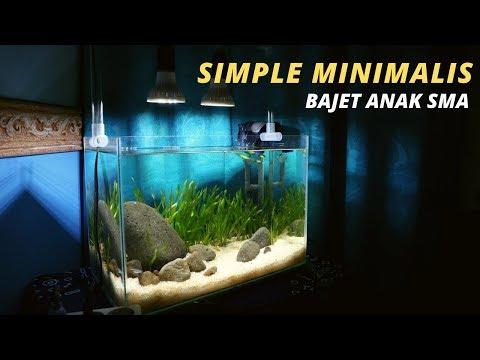 tutorial-membuat-aquascape-murah-//-13