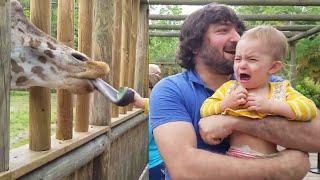 아기와 아이들을 조롱하는 재미있는 동물 🙈🙊🐓 재미있는 아기와 애완 동물