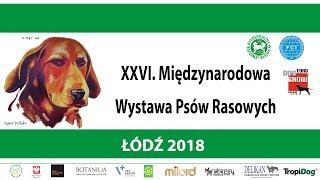 Międzynarodowa Wystawa Psów Rasowych - Łódź 2018 (niedziela)