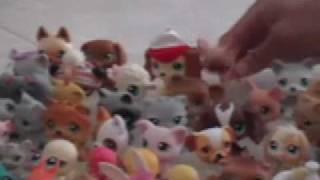 Littlest Pet shop Revenge