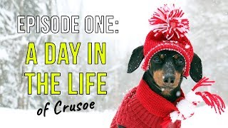 Episode One: A Day in the Life of Crusoe thumbnail