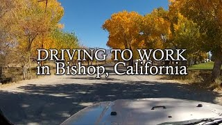 Driving to Work in Bishop, California