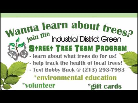 Big Mama Tree Run - IDG Street Tree Team Program! Reach Out And Touch A Tree!