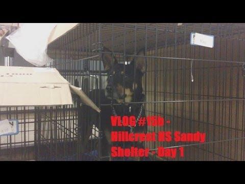 Hillcrest High School - Hurricane Sandy Shelter - Day 1 - (Vlog #15b)