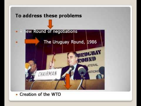 Role of the World Trade Organization part 1