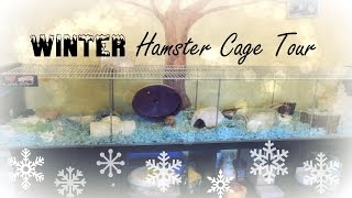 ❄winter-themed Hamster Cage Tour❄