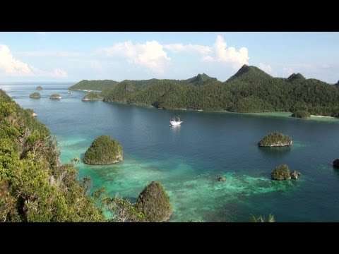 Raja Ampat, Papua, Indonesia - Diving the Most Bio-Diverse Reefs on the Planet - No Music