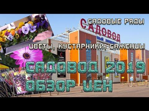 Садовод. Москва 2019.Растения саженцы цветы.Огромный рынок. Цены шок