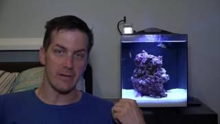 HOW TO: Care & Maintain a Fluval Sea EVO Aquarium (ft. Mr. Saltwater Tank)