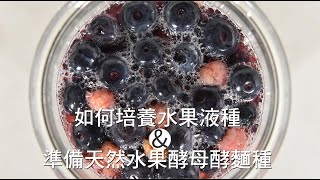 《不萊嗯的烘焙廚房》如何培養水果液種及準備天然水果酵母酵麵種