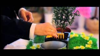Свадьба Александры & Георгия (агентство Свадебный Переполох)