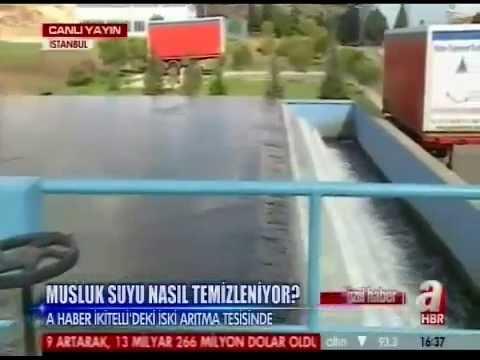 BJK Tv Canlı izle  Beşiktaş Tv Kesintisiz izle