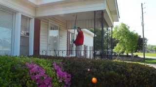 Pest Control Birmingham Al - Mr Buggs Pest Patrol