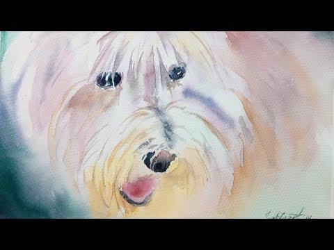Картина акварелью Жемчужный пёс.