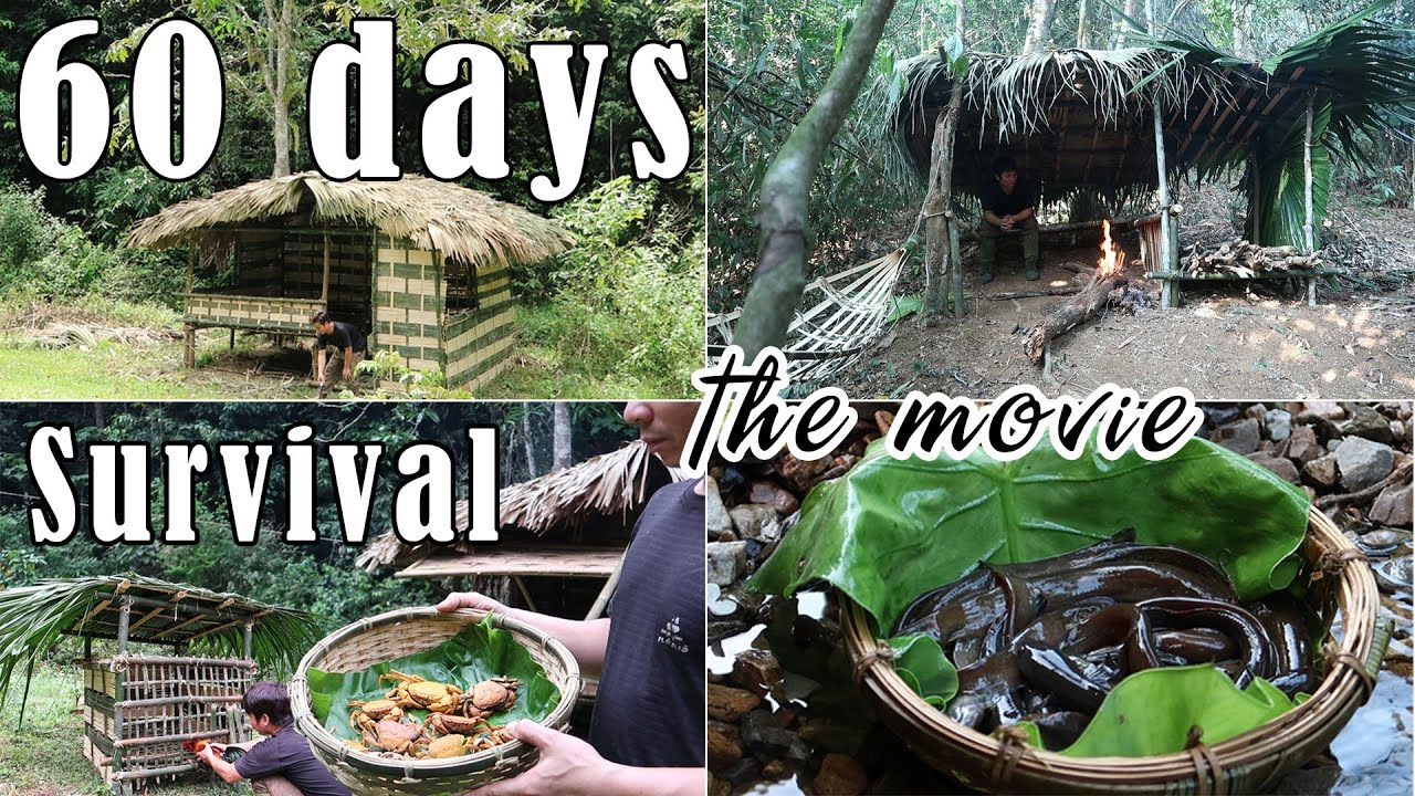 60 Day Survival Challenge   Survival Alone In The Rainforest