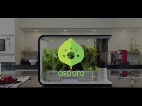 aspara - the Smart Veggie Grower