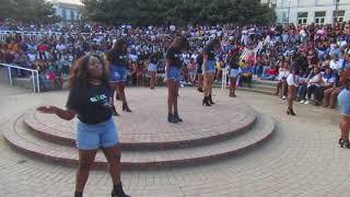Alpha Kappa Alpha throws shade at Delta Sigma Theta and Sigma Gamma Rho in a seductive serenade