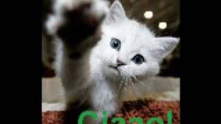 MacFly - Ciao Ciao (Italo Complete Extended)
