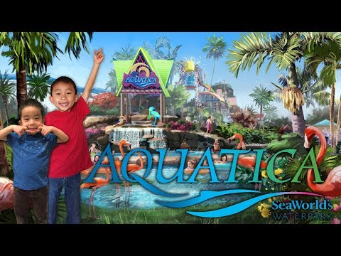 Aquatica, SeaWorld's Waterpark in San Diego California: Traveling with Kids
