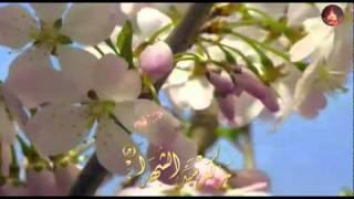 الف الصلاة على النبي أحمد وآله صالح الدرازي منتديات درر العراق