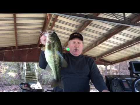 Lake of the ozarks fishing report 3 2 17 from for Fishing report lake of the ozarks