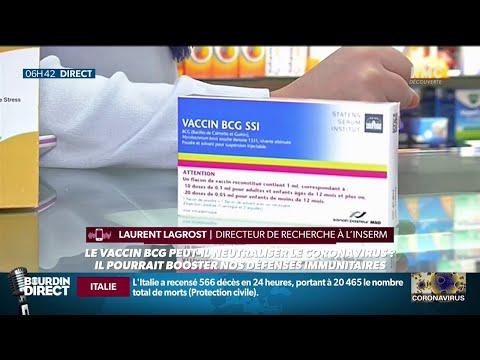 Coronavirus: et si le vaccin BCG pouvait aider à le neutraliser?