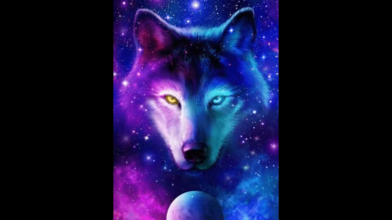 Night Sky Wolf Live Wallpaper For Android Youtube