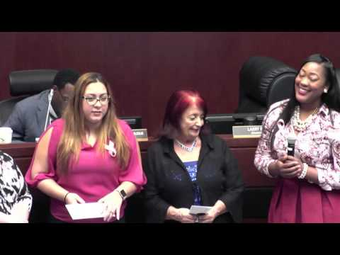 10.26.2016 Council Meeting