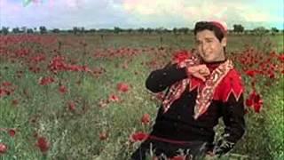 Roka Kai Baar Maine Dil Ki Umang Ko, Superhit Song, Mere Sanam