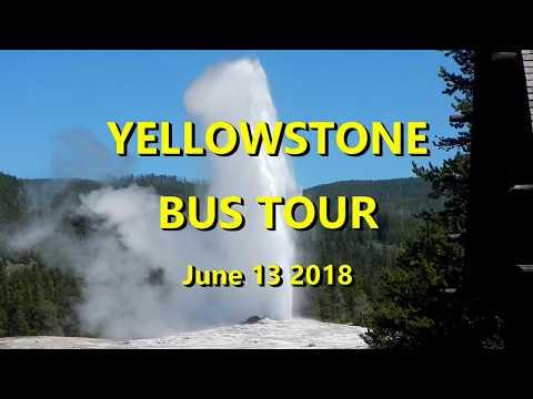 Yellowstone Bus Tour