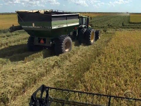 Massive farm bill contains several surprises