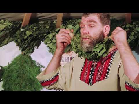 Веники для бани, виды и применение. Русская баня