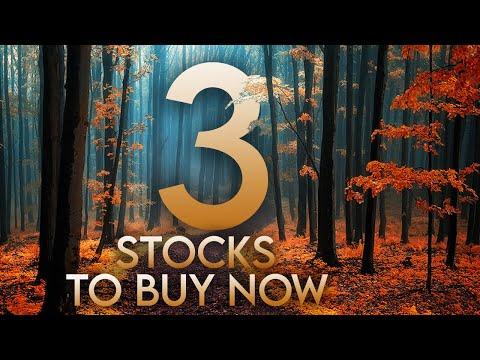 Top 3 Massive Undervalued Stocks to Buy in October