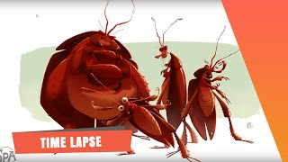 The SPA Studios. Sergio Pablos' Character Time Lapse Drawing. Roaches.