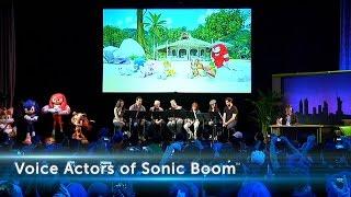 Sonic Boom 2014 Fan Event - Recap Video