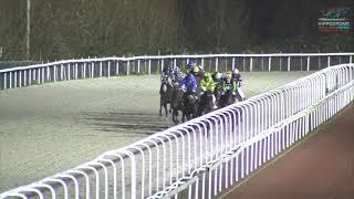Vidéo de la course PMU PRIX SINNEKEAR