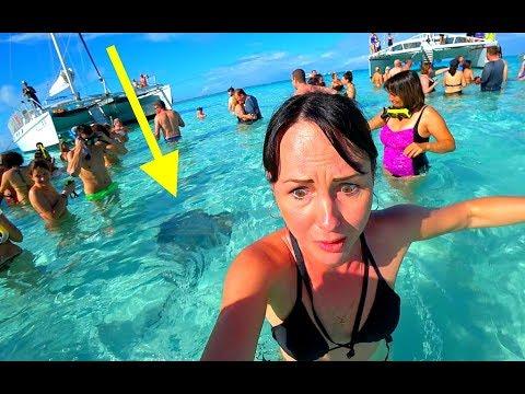 Кайманы.РАЙСКИЕ ОСТРОВА!  Что меня ТАК напугало????? Cayman islands (#6)