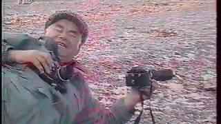 В мире животных. Камчатка, хищники африканских саванн    ( оцифровка 90-х)
