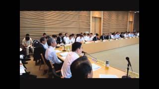 平成23年度第1回地方分権推進特別委員会