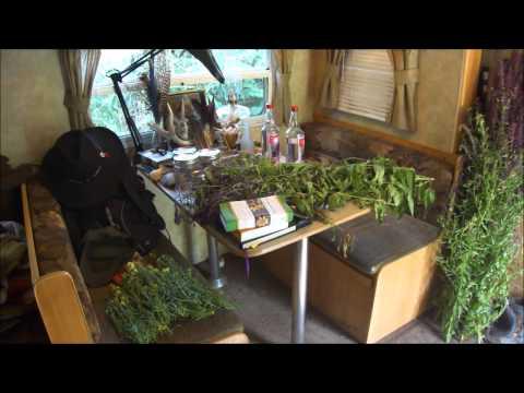 Herbalism in New York City