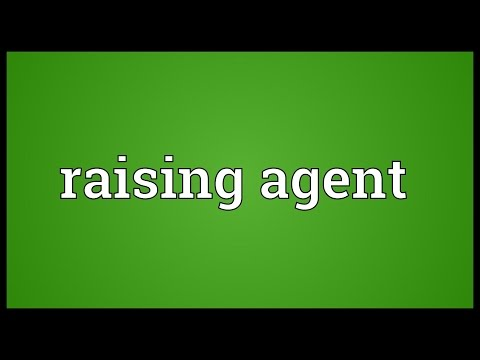 Raising Agent Meaning