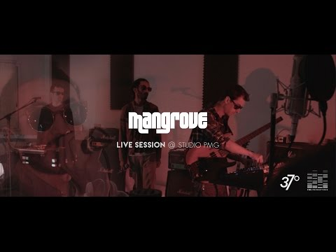 Live @ Studio PMG - Mangrove