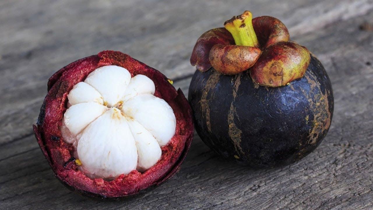 7 frutas ex ticas que son nicos en el mundo youtube - Frutas tropicales y exoticas ...