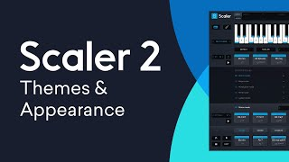 Scaler 2 New Features | Themes Appearance Customization