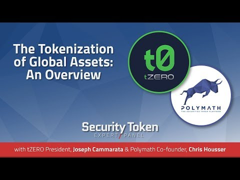 The Tokenization of Global Assets: An Overview (Expert Panel with tZero and Polymath)