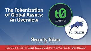 The Tokenization of Global Assets: An Overview (Expert Panel with tZero and Polymath) thumbnail